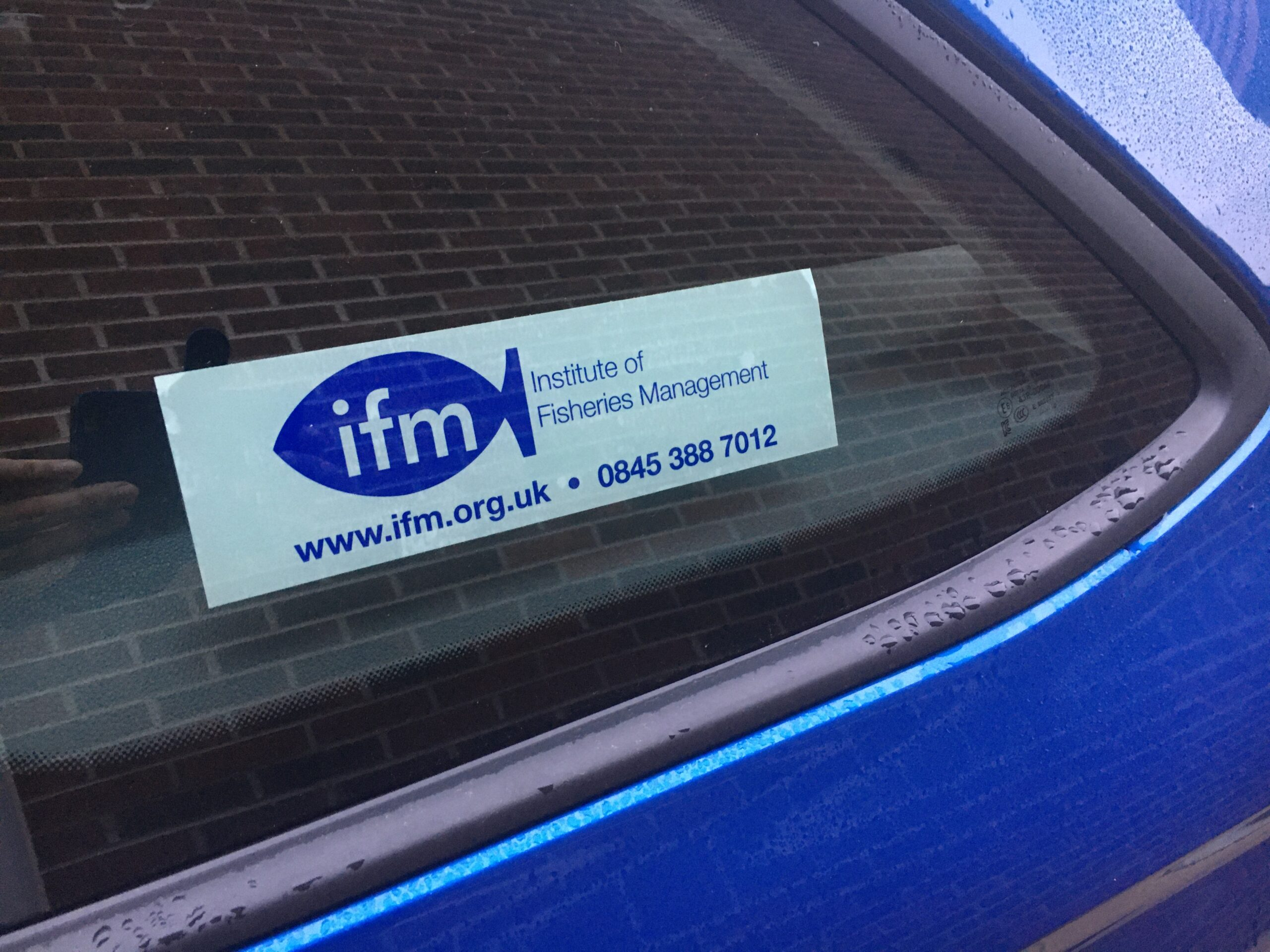 IFM Car sticker